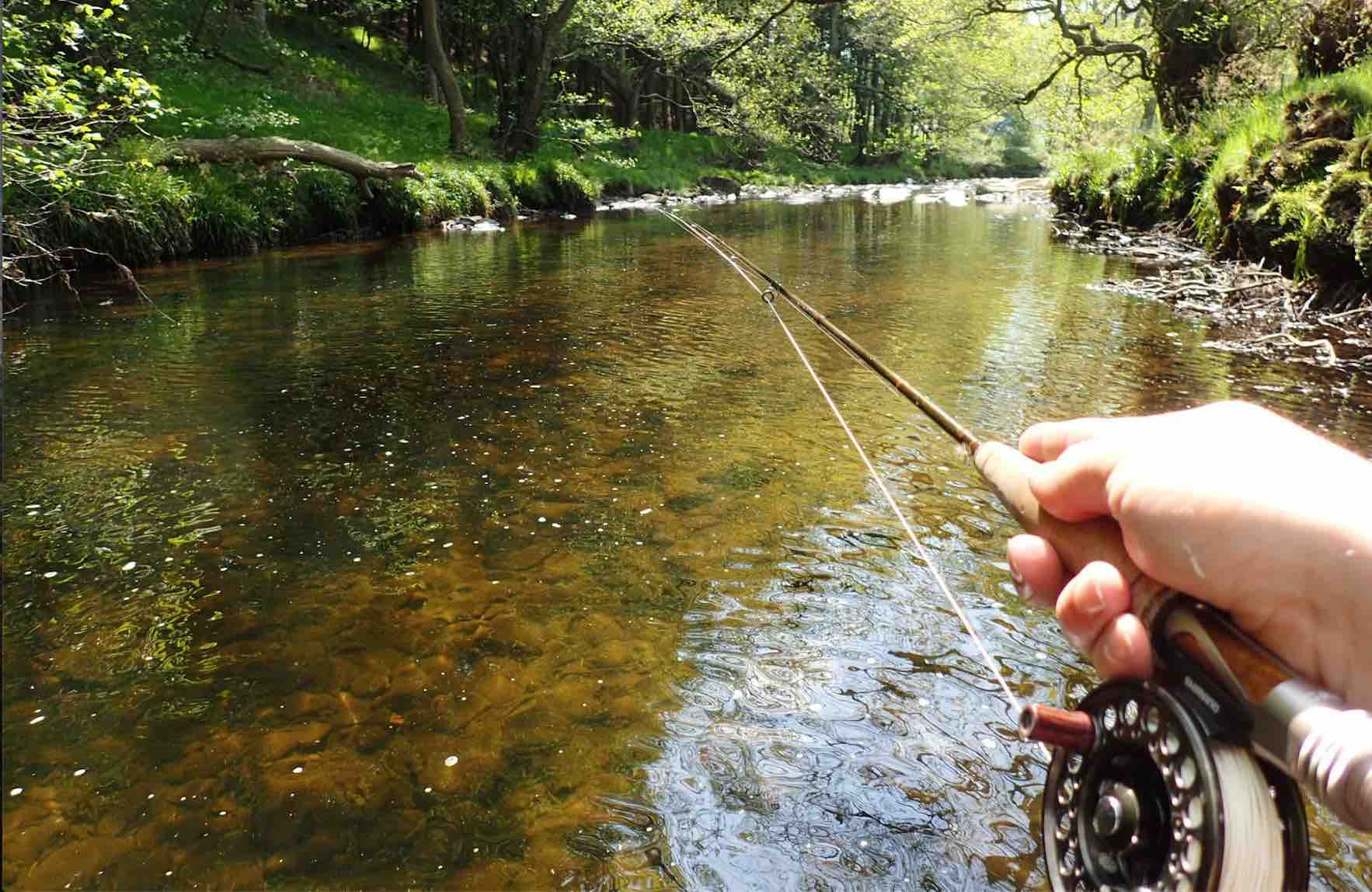 5 River Nymph Fishing Tips