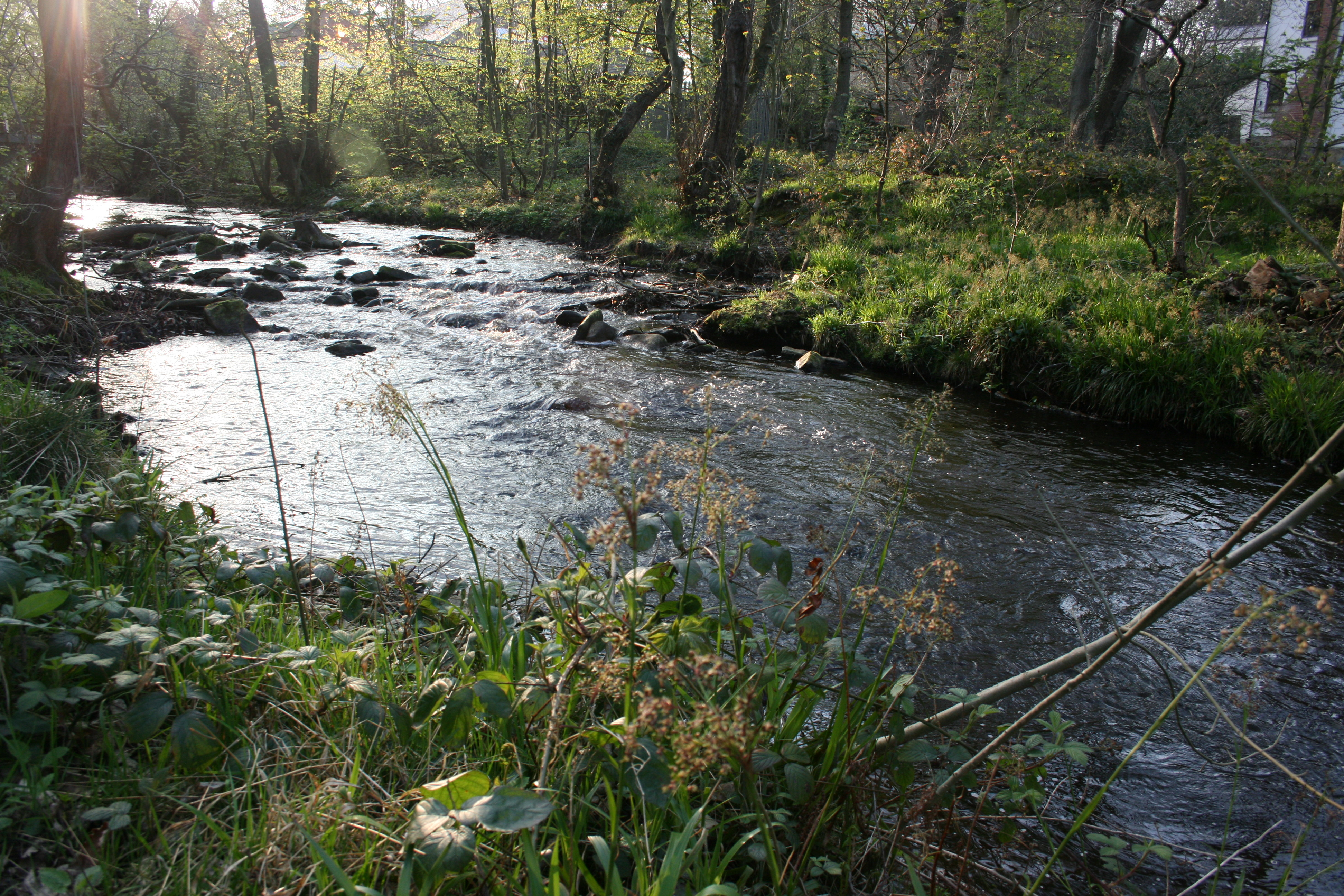 River Water Craft – Fly Fishing Coloured Water