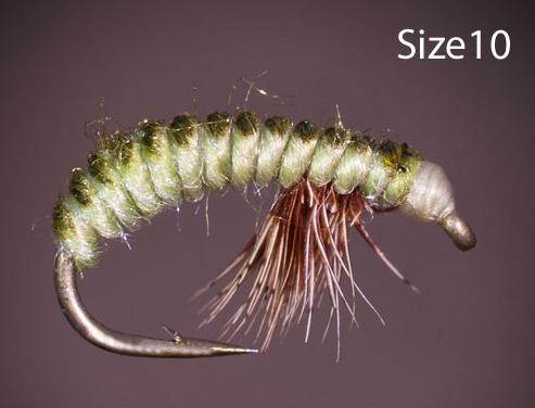 Rhyacophila Larva Czech Nymph