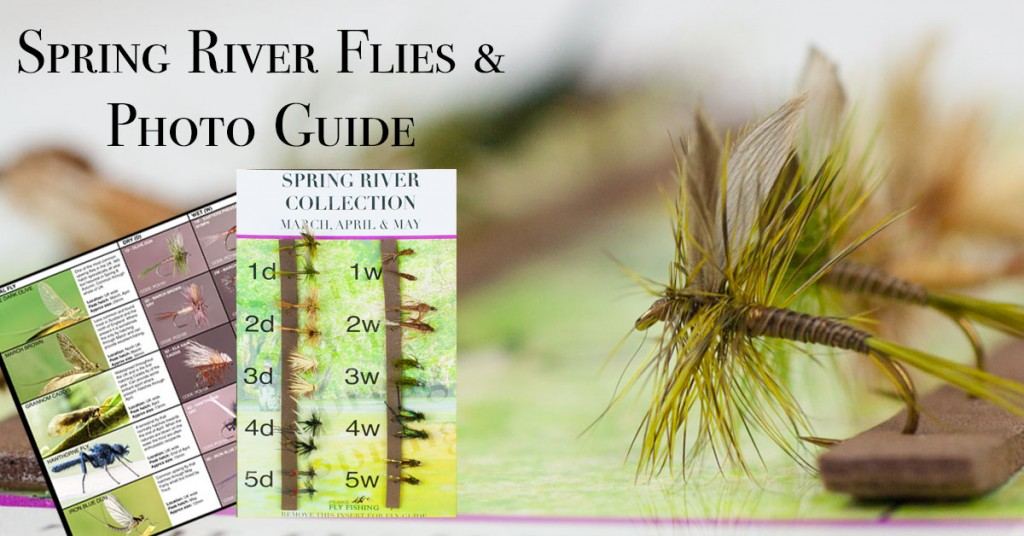 spring-river-FB-Advert