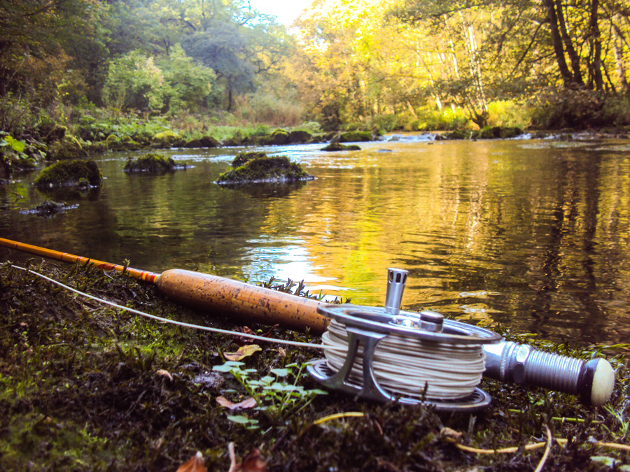 Dry Fly Fishing On Rivers – A Beginners Guide