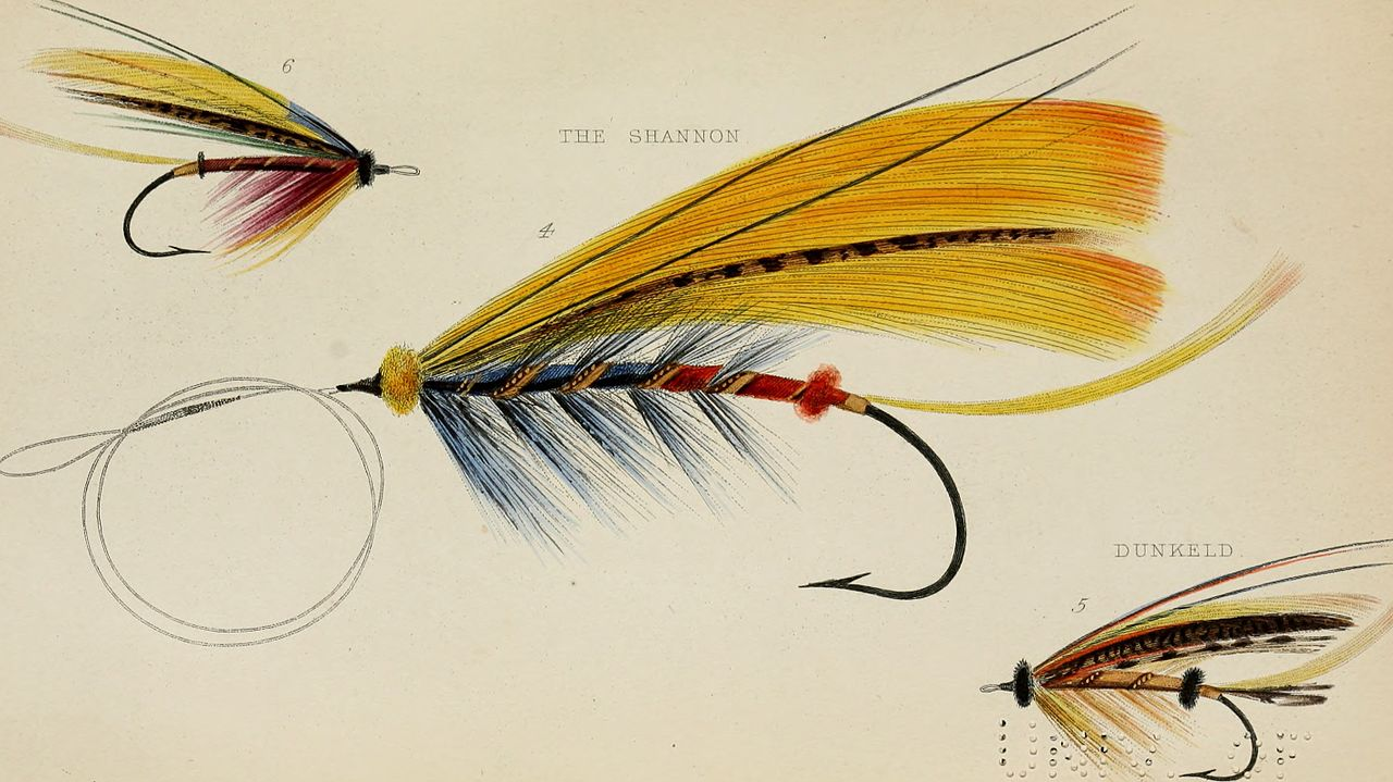 Fly Tying For Beginners – Where To Start